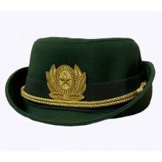 Шляпа офисная офицерский состав олива